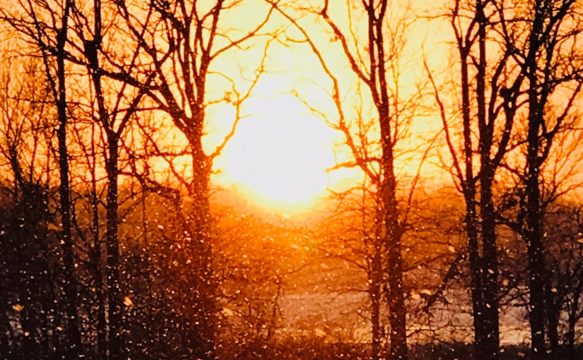 Your Faith, Being Much More Precious Than Gold- Photograph of A Sunny SnowyDay